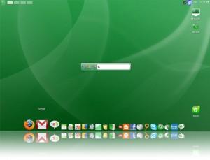 Google OS Beta
