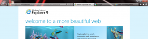 The new IE9 navigation bar