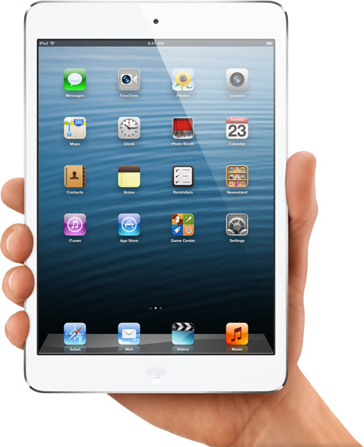 iPad Mini Being Held Up