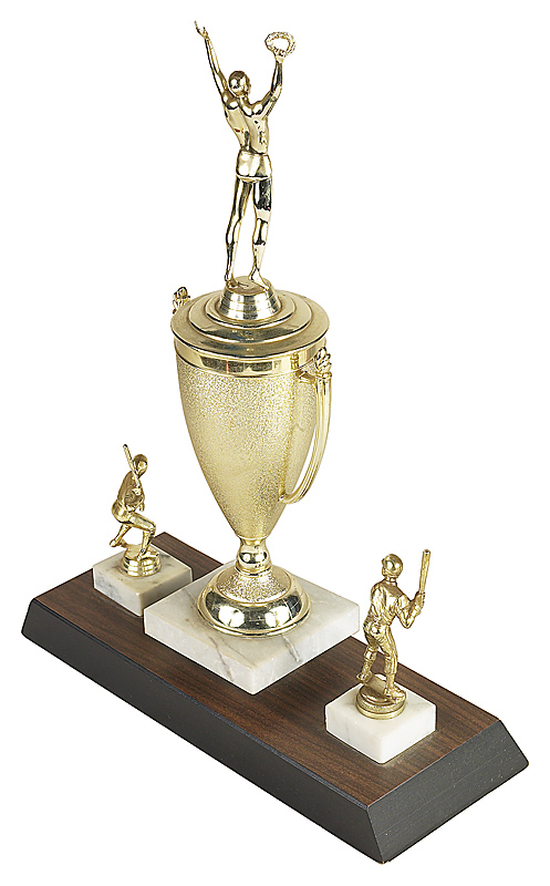 Achievements and Trophies