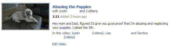 Abusing the Puppies