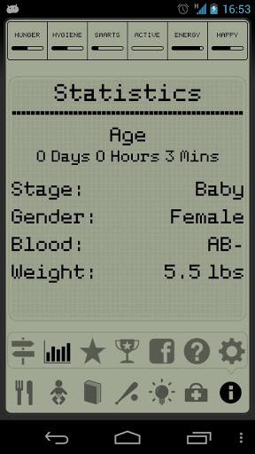 Hatchi Statistics